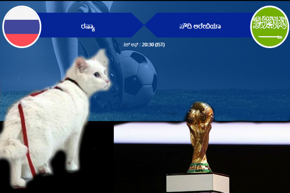 FIFA World Cup 2018 : Achilles oracle cat predicts Russia to win against Saudi Arabia