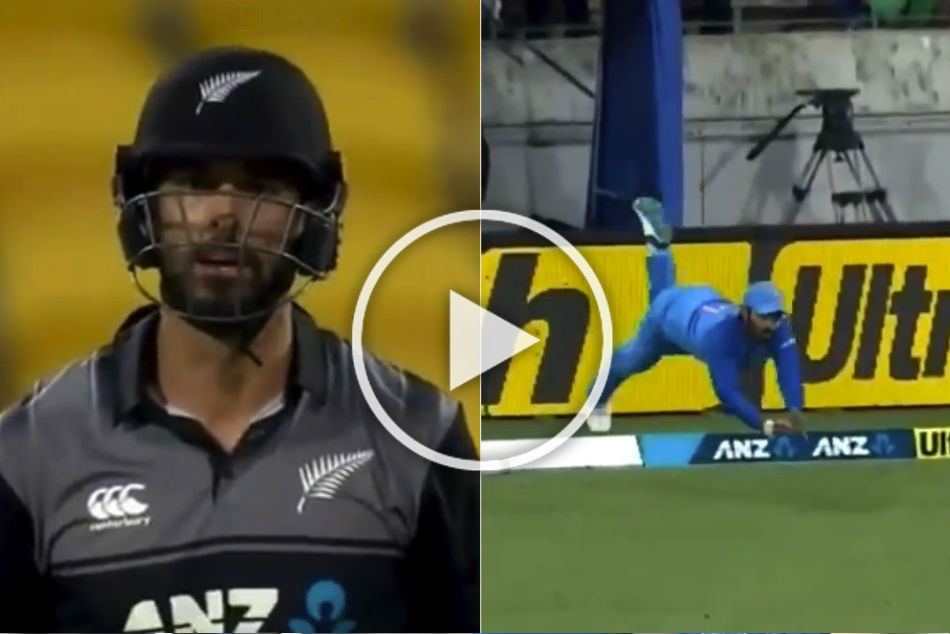 India vs New Zealand: Dinesh Karthik takes 'catch of the season' - Watch