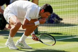 Novak Djokovic Eats Grass Celebrate Fourth Wimbledon Title