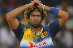 After Arjuna Ranatunga Sri Lanka S Malinga Accused Sexual Assault