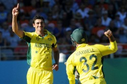 India Vs Australia Final T20 Mitchell Starc Called Up Replacing Billy Stanlake