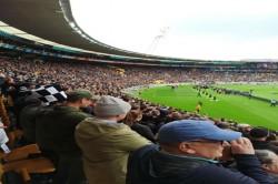 Rugby Image Of New Zealand Fans Enjoying Sport At Wellington Stadium Stuns World