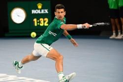 Australian Open Novak Djokovic Reached Semi Final